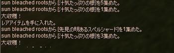 Eq2_001438